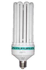 250W CFL Bulbs